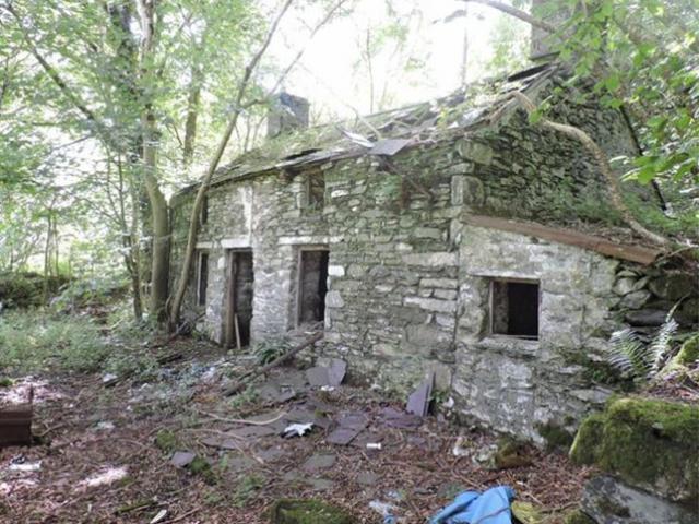 Căn nhà cũ nát mua gần 2 triệu, 20 năm sau điều không tưởng ập đến ai cũng choáng
