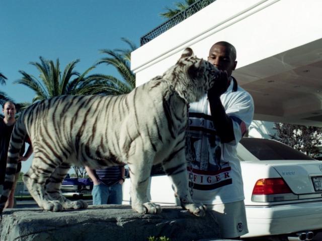 """Mike Tyson ngông cuồng nuôi hổ làm """"thú cưng"""", ngủ với hổ và vào viện vì bị cắn"""