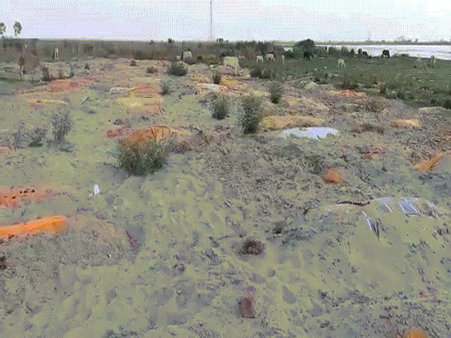 """Video: Chưa vớt hết thi thể trôi ở sông Hằng, lại phát hiện """"nghĩa địa"""" mới"""