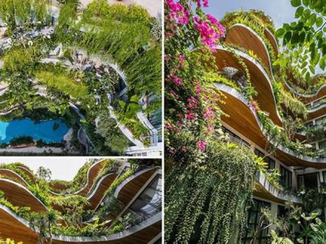 Tòa nhà cũ được cải tạo thành 'ốc đảo xanh' ở Sài Gòn khiến báo nước ngoài trầm trồ
