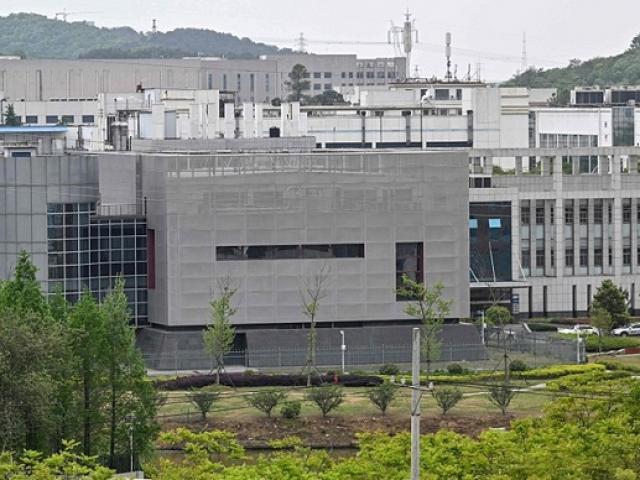 Trung Quốc công bố thông tin mới trong báo cáo điều tra nguồn gốc Covid-19