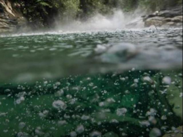 Dòng sông nào nóng nhất thế giới, chạm vào nước sẽ bị bỏng sâu?