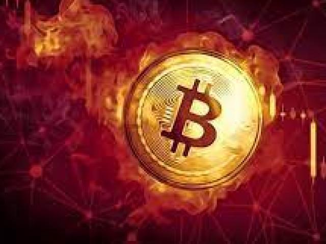 Rơi tự do, bitcoin giảm thảm, vốn hóa thị trường tiền điện tử bốc hơi 200 tỷ USD