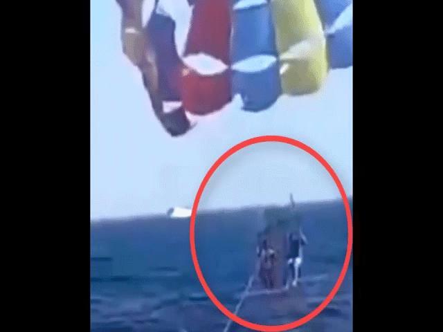 Video: Cá mập bất ngờ nhảy lên đớp chân người chơi dù lượn