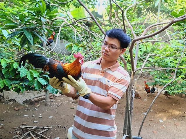 9x Thanh Hóa kiếm 50 triệu đồng/tháng nhờ nuôi loại gà lạ