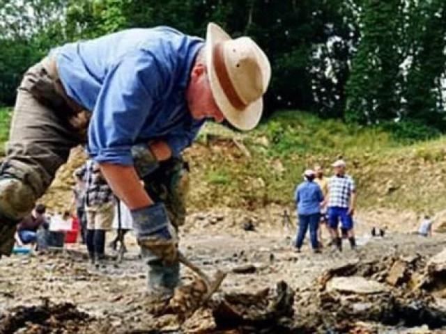 """Dùng Google Earth, cặp đôi tìm được hàng trăm """"quái vật"""" 167 triệu tuổi"""
