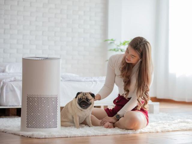 Những lý do cần trang bị máy lọc không khí cho ngôi nhà