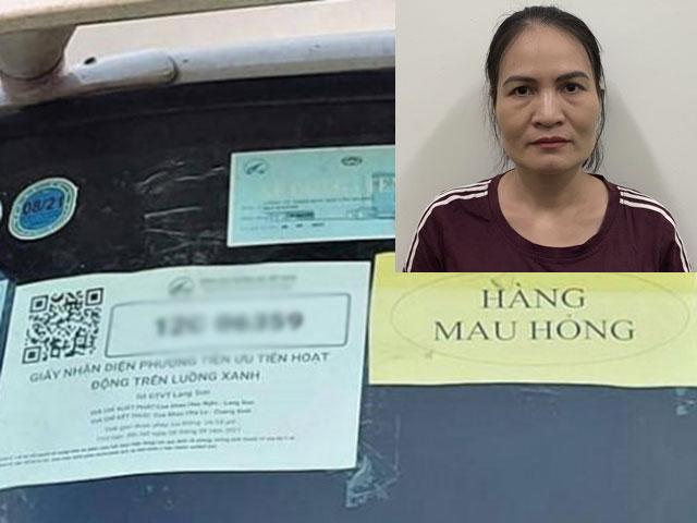 Tổng cục Đường bộ xin lỗi nhân dân và doanh nghiệp vận tải vụ nữ chuyên viên bị khởi tố