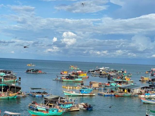 Hàng trăm tấn cá lồng bè ở Kiên Giang ''nghẽn'' đầu ra do dịch COVID-19
