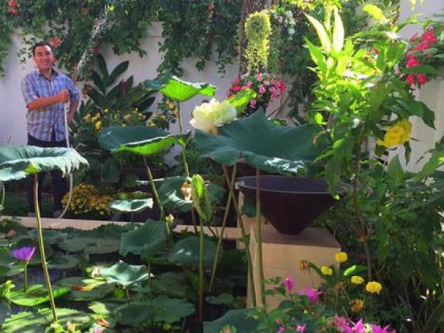 """Nhà vườn """"siêu khủng"""" của Quyền Linh, Hồng Vân và loạt nghệ sĩ Việt"""