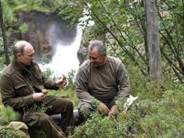 """""""Nếu muỗi cản trở Putin và Shoigu, đầm lầy trong rừng Taiga sẽ bị rút cạn"""""""