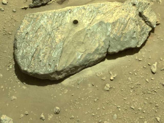 """NASA """"tóm gọn"""" mẫu vật Sao Hỏa đầu tiên, chuẩn bị đưa về Trái Đất"""
