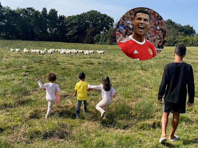 Ngã ngửa lý do Ronaldo chuyển nhà khẩn cấp, đồng đội cũ Evra trêu chọc