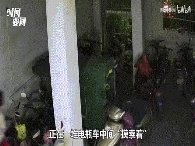 Nữ tặc bị bắt quả tang đang ăn trộm tại nhà xe, danh tính thật sự khiến mọi người ngã ngửa